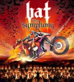Skegness Embassy Theatre Bat - The Symphony
